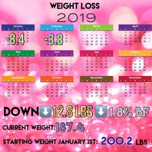 weight loss tracker calendar 2019